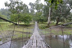 Ponte di corda Immagine Stock Libera da Diritti