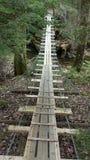 Ponte di corda Fotografie Stock Libere da Diritti