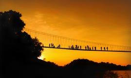 Ponte di corda attraverso un fiume Immagine Stock