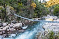Ponte di corda d'acciaio attraverso La Figarella a Bonifatu in Corsica Fotografia Stock