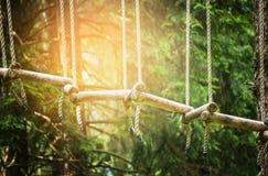 Ponte di corda in foresta rampicante o nel parco dell'alto cavo, all'aperto fotografia stock libera da diritti
