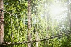 Ponte di corda in foresta rampicante o nel parco dell'alto cavo sul fondo soleggiato della natura immagini stock
