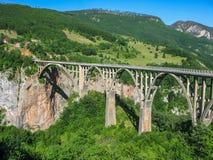 Ponte di Dzhurdzhevich - ponte concreto dell'arco attraverso il fiume Cesalpina nel Nord del Montenegro immagini stock