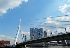 Ponte di ERASMUS (Erasmusbrug), Rotterdam, Paesi Bassi Fotografie Stock