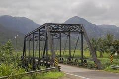 Ponte di Hanalei Immagine Stock Libera da Diritti