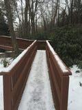 Ponte di inverni Immagine Stock