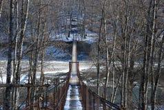 Ponte di inverno Fotografia Stock