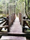 Ponte di legno Стоковая Фотография RF