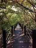Ponte di legno Immagine Stock