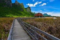 Ponte di legno alla capanna rossa che circonda dal prato dorato Fotografia Stock Libera da Diritti