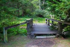 Ponte di legno attraverso in foresta australiana Fotografia Stock