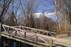Ponte di legno attraverso il fiume Fotografia Stock Libera da Diritti