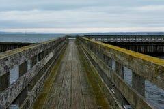 Ponte di legno con crescita verde che indica un mare tempestoso Fotografia Stock Libera da Diritti