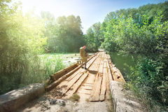 Ponte di legno con la persona uscente attraverso il lago fotografia stock libera da diritti