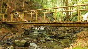 Ponte di legno del piede archivi video