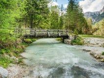 Ponte di legno del piede sopra il fiume della montagna di verde blu, foresta della molla Fotografie Stock Libere da Diritti