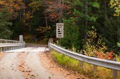 ponte di legno del Un-vicolo Immagine Stock
