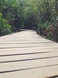 Ponte di legno di vita Fotografia Stock