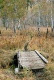 Ponte di legno e traccia Fotografie Stock Libere da Diritti