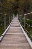 Ponte di legno il fiume di Soca di verde del turchese Fotografia Stock Libera da Diritti