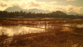 Ponte di legno il Mekong, Laos Fotografia Stock Libera da Diritti
