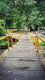 Ponte di legno nel parco Immagini Stock Libere da Diritti