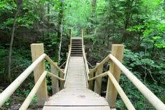 Ponte di legno nella foresta Sigulda Fotografie Stock Libere da Diritti