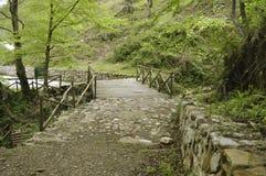 Ponte di legno nelle montagne Immagine Stock Libera da Diritti