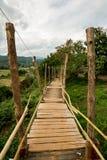 Ponte di legno sopra il campo di agricoltura dell'agricoltore per la passeggiata attraverso Fotografia Stock