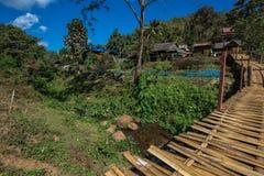Ponte di legno sopra il campo di agricoltura dell'agricoltore per la passeggiata attraverso Immagini Stock