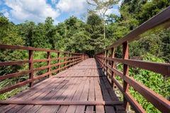 Ponte di legno sopra il fiume che conduce al fondo del cielo e della foresta Fotografia Stock Libera da Diritti