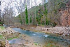 Ponte di legno sopra il mondo II del fiume Immagine Stock