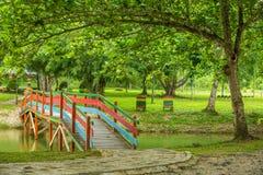 Ponte di legno sul lago Immagine Stock