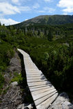 Ponte di legno sulla traccia in montagne di Karkonosze Immagine Stock