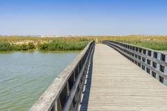 Ponte di legno tramite la riserva naturale del DOS Salgados della Praia, Portogallo immagine stock libera da diritti