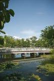 Ponte di legno in un parco Fotografia Stock Libera da Diritti