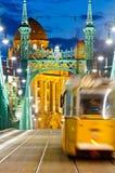 Ponte di libertà, Budapest, Ungheria Fotografie Stock