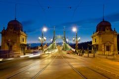 Ponte di libertà, Budapest, Ungheria Fotografie Stock Libere da Diritti