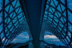 Ponte di libertà a Tbilisi Fotografie Stock