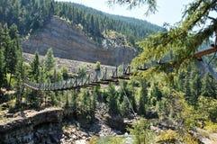 Ponte di oscillazione di cadute di Kootenai, Montana Immagine Stock