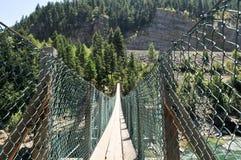Ponte di oscillazione di cadute di Kootenai, Montana Fotografie Stock