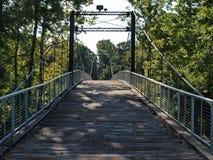 Ponte di oscillazione sopra un fiume Immagine Stock Libera da Diritti