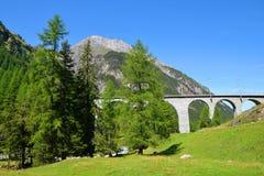 Ponte di pietra della ferrovia del distretto di Albula Immagine Stock Libera da Diritti