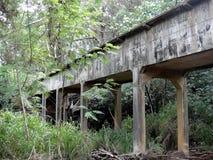 Ponte di pietra in giungla Immagine Stock Libera da Diritti