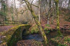 Ponte di pietra muscoso fotografie stock libere da diritti