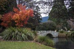 Ponte di pietra in parco Immagine Stock