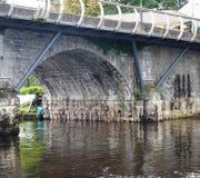 Ponte di pietra sopra Shannon River In Ireland Fotografia Stock