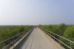 Ponte di Sandwip immagini stock