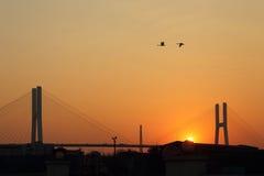 Ponte di Shanghai Nanpu fotografia stock