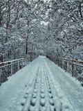 Ponte di Snowy immagini stock libere da diritti